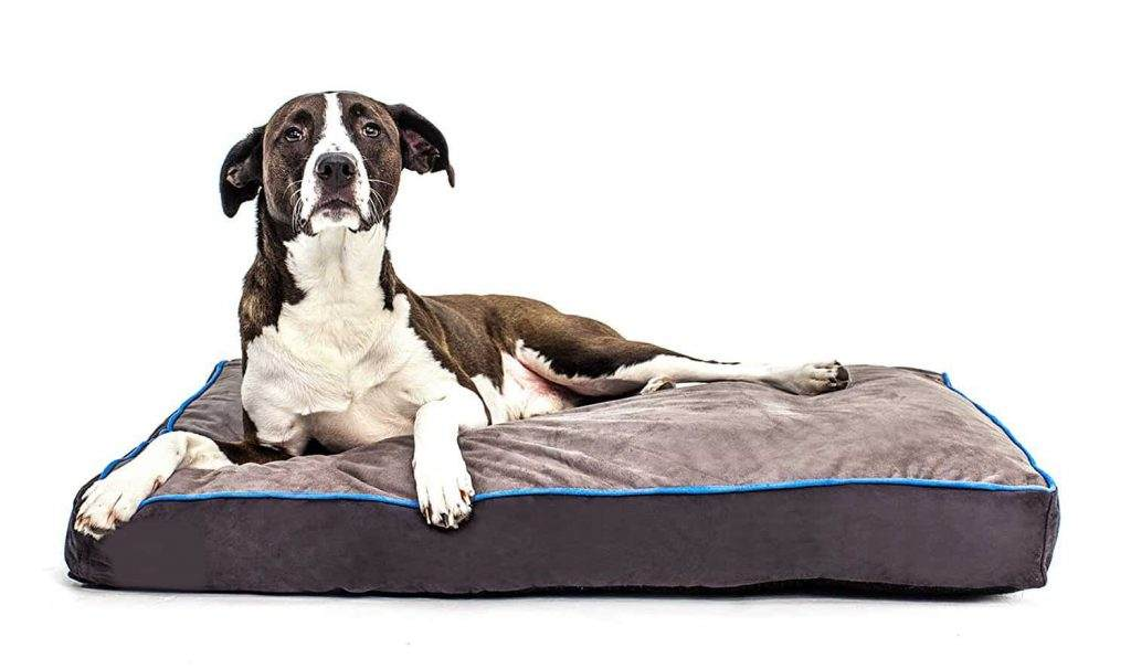 Pillow Cushioned Bed